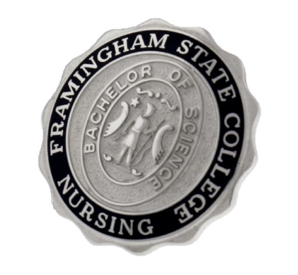 Augustana Training School for Nurses Graduation Pin 1902 ...  |Nursing Graduation Pins